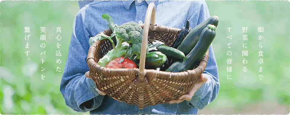 伊藤園芸の野菜たち